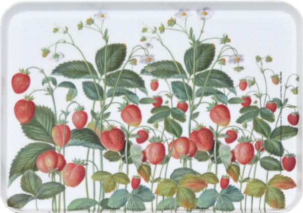 """Tablett small """"Erdbeeren aus dem Nassau Florilegium"""""""