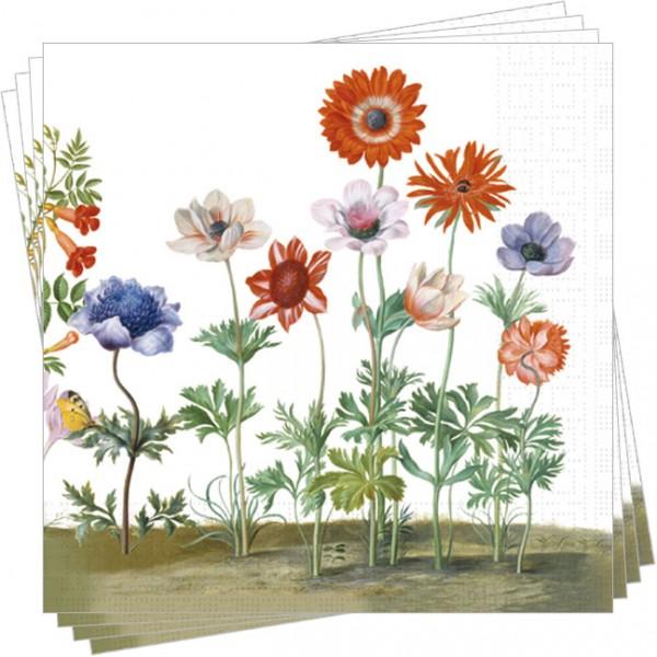 Servietten 'Blumen aus dem Nassau Florilegium'