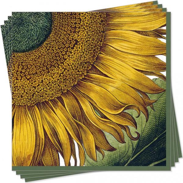 Servietten 'Sonnenblume aus dem Garten von Eichstätt'