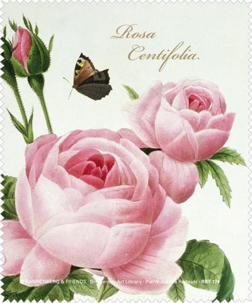 Brillenputztuch 'Rosa centifolia'
