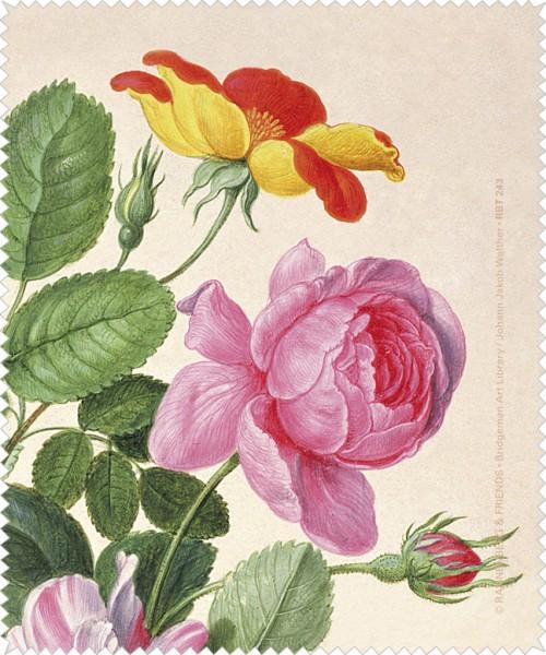 Brillenputztuch 'Rosen aus dem Nassau Florilegium'
