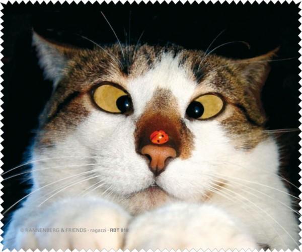 Brillenputztuch 'Schielende Katze'