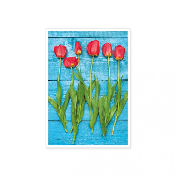 "Postkarte ""Frühlingsboten"""