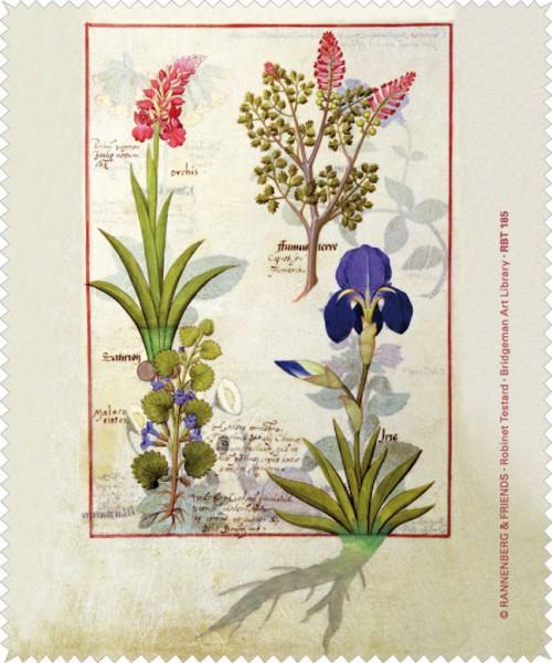 Brillenputztuch 'Orchidee und Erdrauch oder Tränendes Herz'