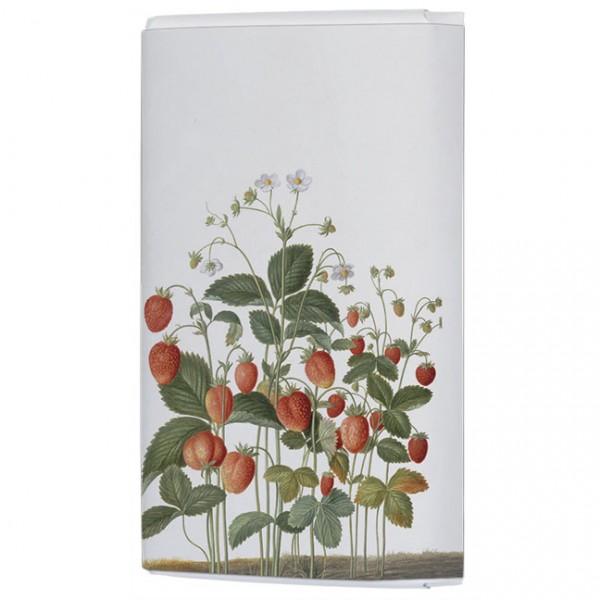 Schokoladentäfelchen 'Erdbeeren a d Nassau Florilegium'