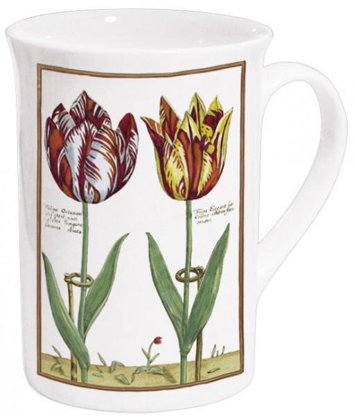 Becher 'Tulipa Octaviani und Tulipa Elegant'