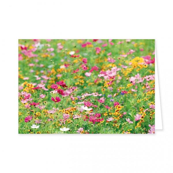 """Doppelkarte """"Wildblumen im Tal"""""""