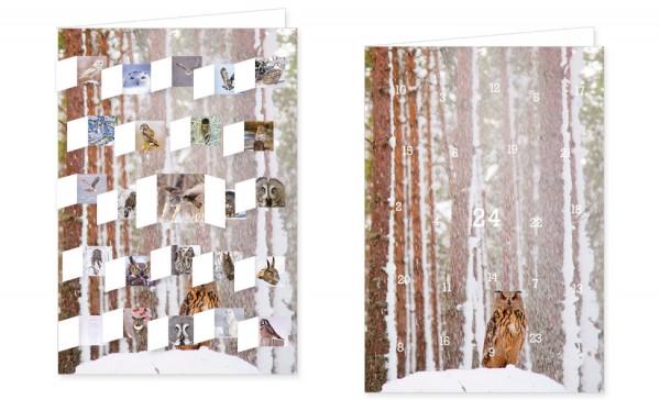 Adventskalenderdoppelkarte 'Lautlose Jäger im Winter'