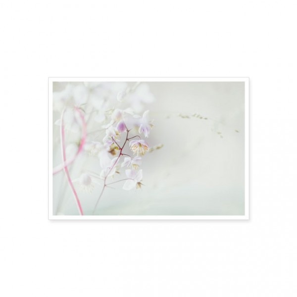 """Postkarte """"Kleine Blüten"""""""