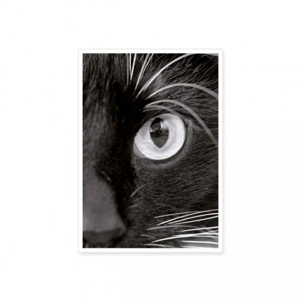 """Postkarte """"Katzenauge"""""""
