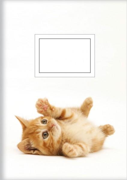 Kladden A5 'Verspielte Katze'