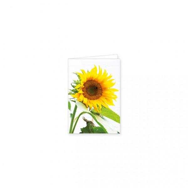 """Mini-Doppelkarte """"Große Sonnenblume"""""""