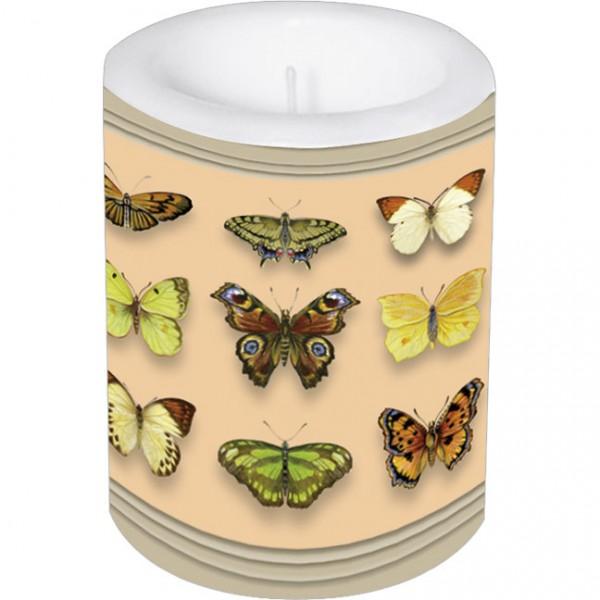 Lampionkerze groß 'Schmetterlinge'