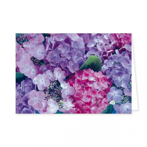 "Doppelkarte ""Hortensienblüten"""