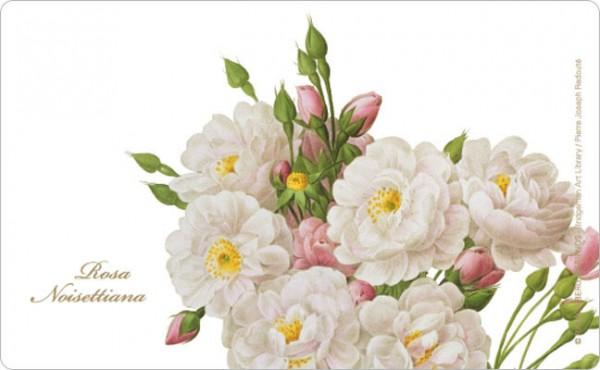Frühstücksbrettchen 'Rosa Noisettiana'