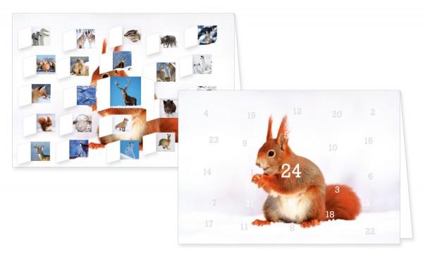 Adventskalenderdoppelkarte 'Heimische Tiere im Winter'