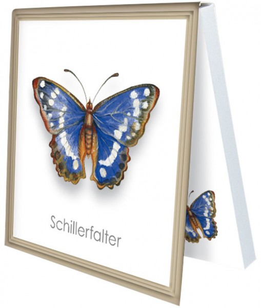 Klebezettel 'Schillerfalter'