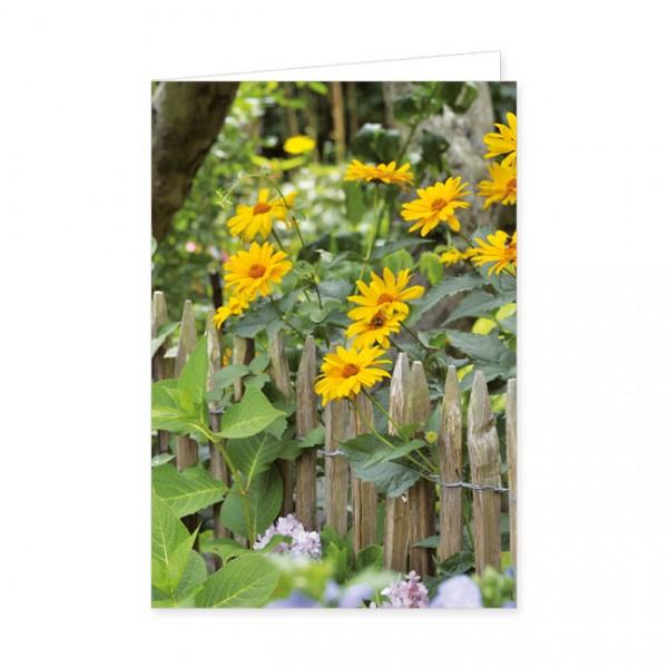 """Doppelkarten """"Garten-Sonnenauge"""""""