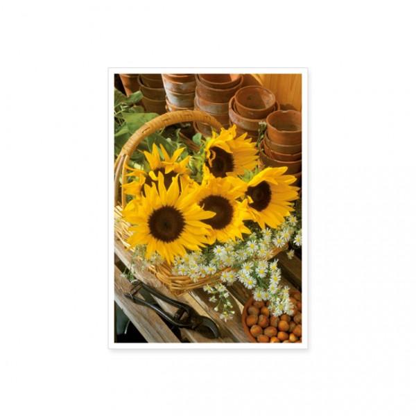 "Postkarte ""Sonnenblumenkorb"""