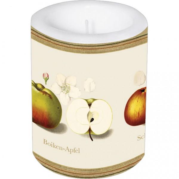 Lampionkerze groß 'Pomologie der Äpfel'