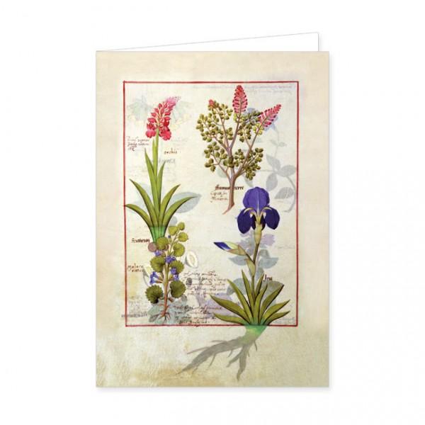 """Doppelkarte Gold """"Orchidee und Erdrauch oder Traenendes Herz"""""""