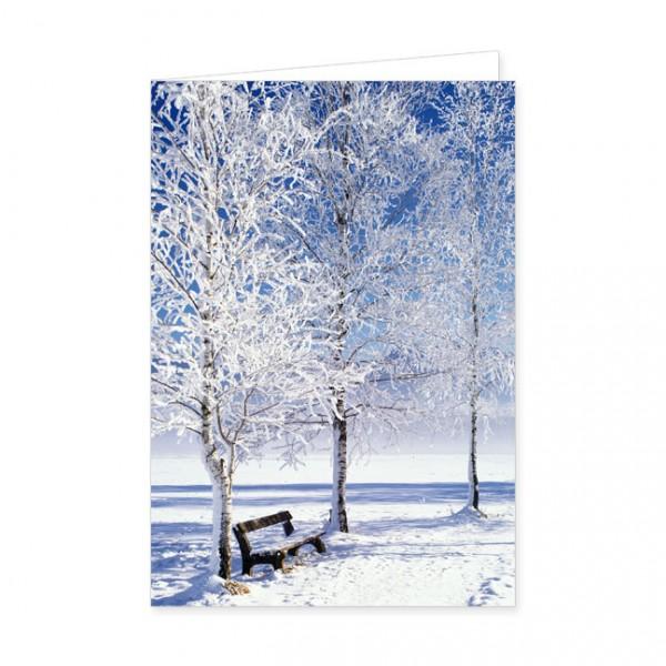 """Doppelkarte """"Bäume im Rauhreif"""""""