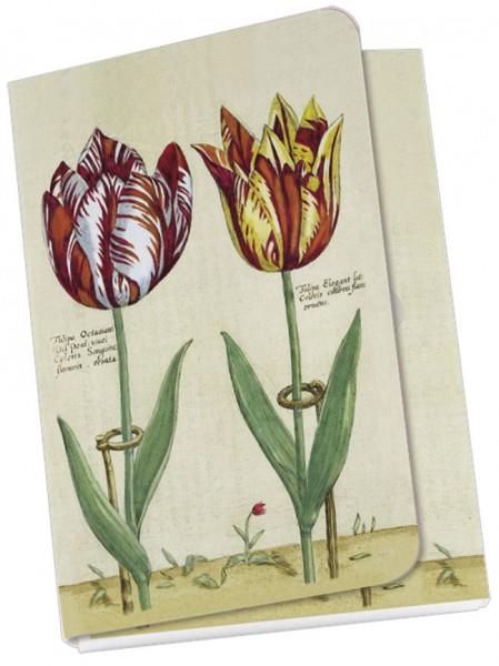 Taschennotizblöckchen 'Tulipa Octaviani und Tulipa Elegant'