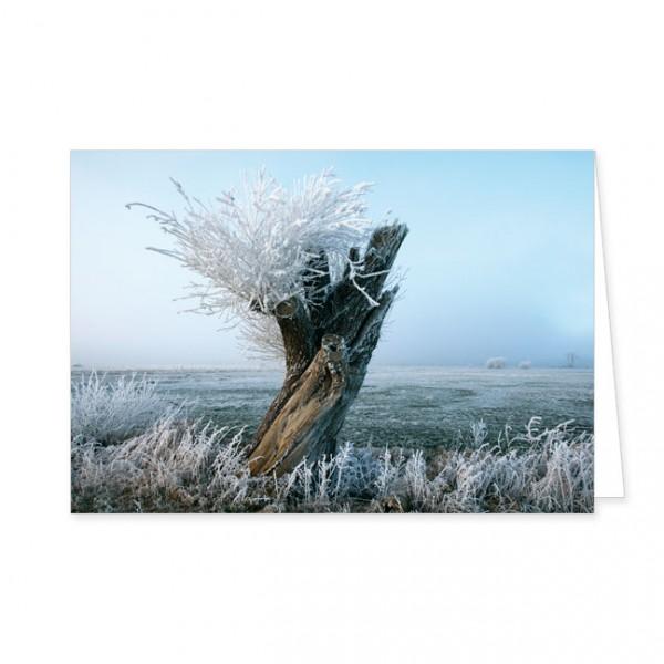 """Doppelkarte """"Weide in Frostlandschaft"""""""