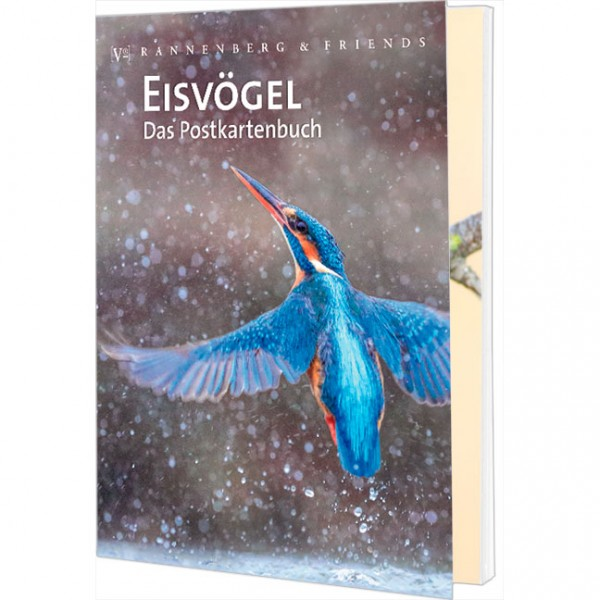"""Postkartenbuch """"Eisvogel"""""""