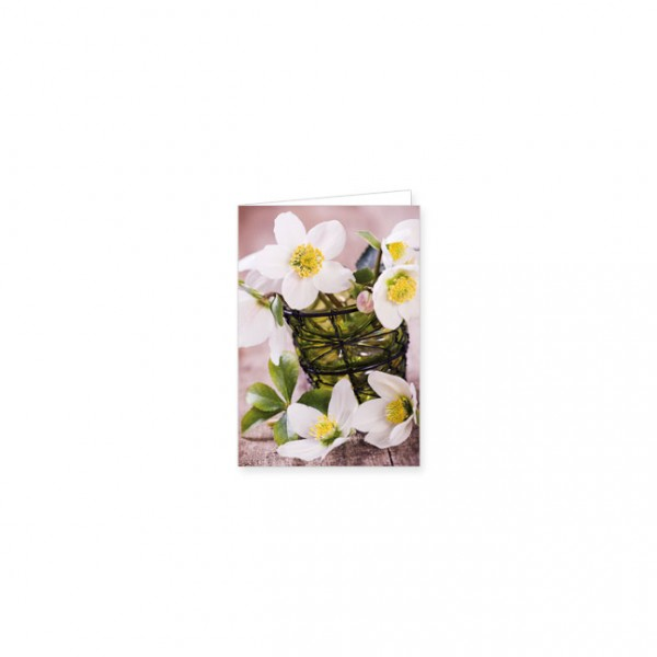 """Mini-Doppelkarte """"Vase mit weißen Christrosen"""""""