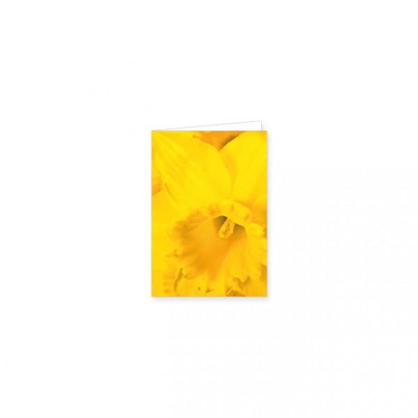 "Mini-Doppelkarte ""Gelbe Narzissen"""