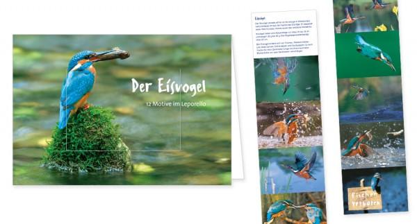 """Türchenkarte """"Eisvögel"""""""