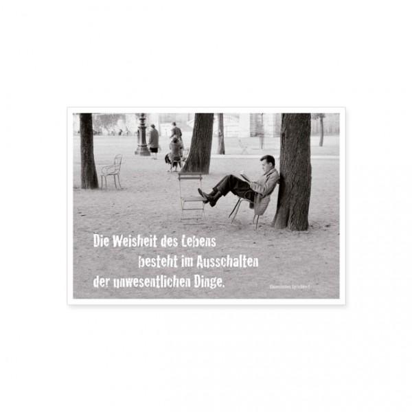 """Postkarte """"Die Weisheit des Lebens"""""""