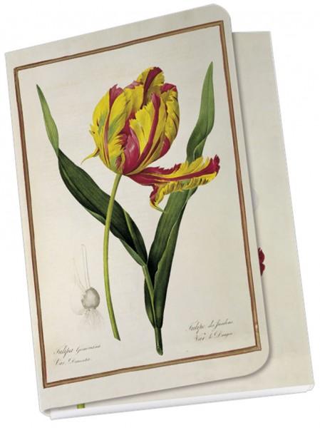 Taschennotizblöckchen 'Tulipa gesneriana dracontia'