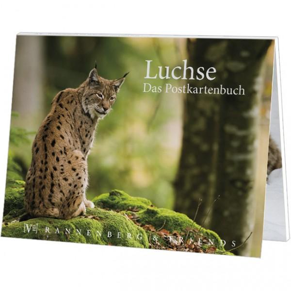 Postkartenbuch 'Luchse'