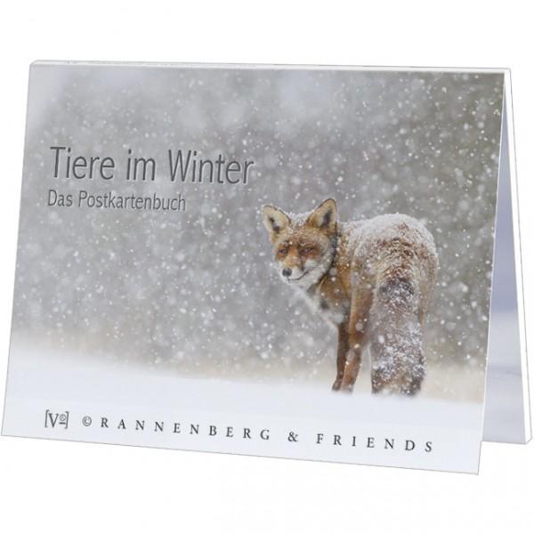 Postkartenbuch 'Tiere im Winter'