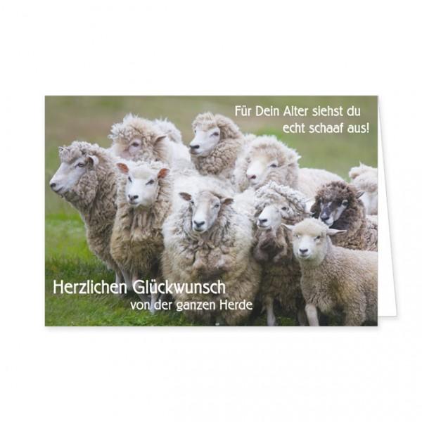"""Doppelkarte """"Herzlichen Glückwunsch von der ganzen Herde"""""""