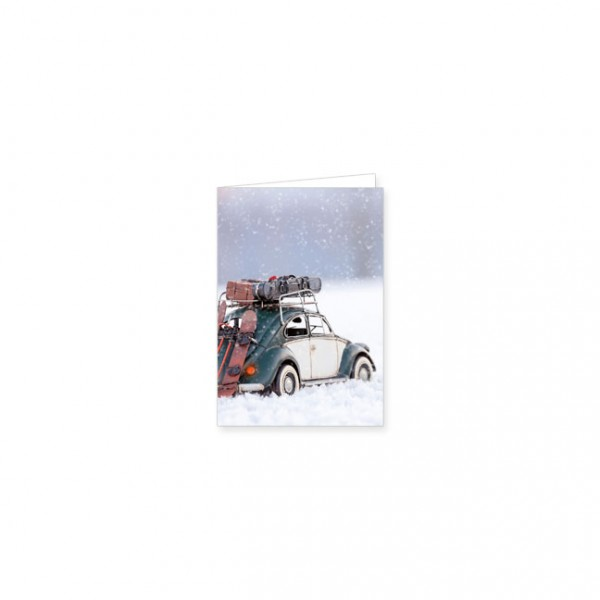 "Mini-Doppelkarte ""Käfer im Schnee"""