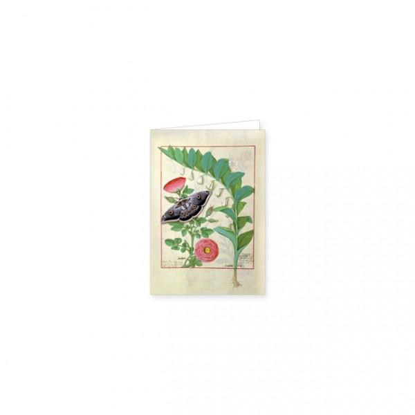 """Mini-Doppelkarten Gold """"Rose und vielblütige Weisswurz"""""""