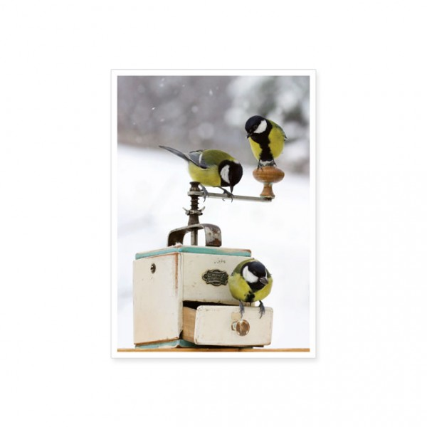 "Postkarte ""Kaffeemühle mit Meisen"""