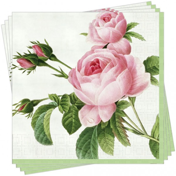 "Servietten ""Rosa centifolia"""