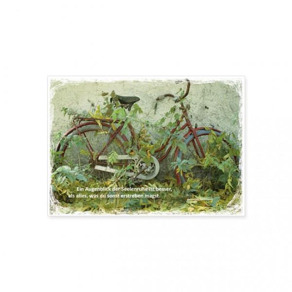"Postkarte ""Ein Augenblick der Seelenruhe"""