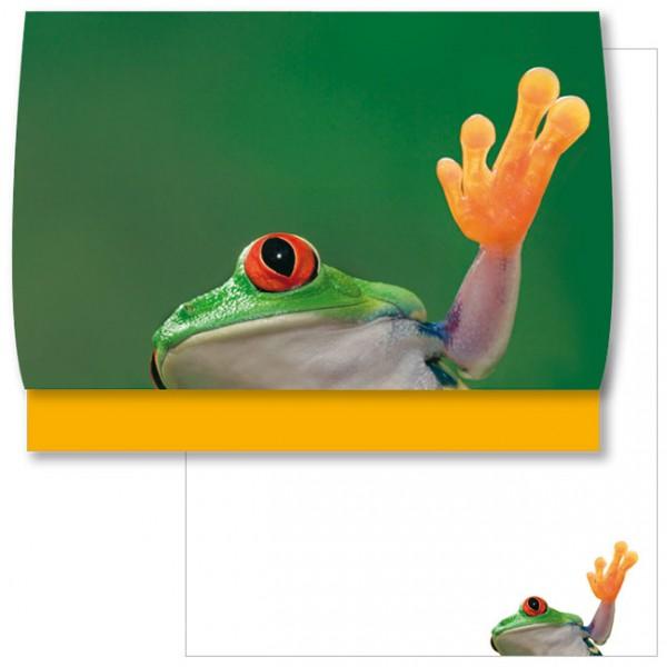 Schreib-Set 'Frosch ahoi'