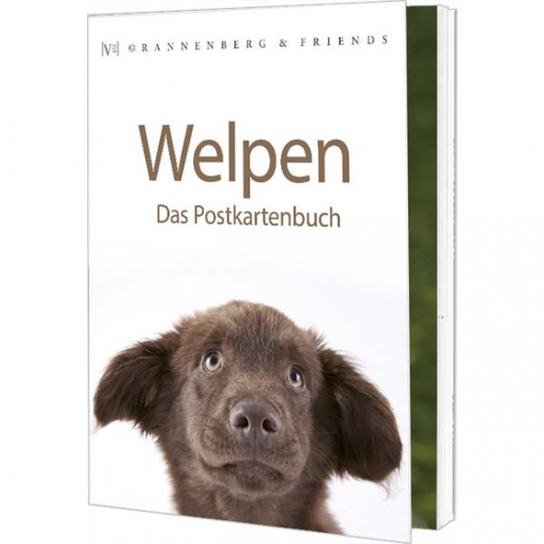 Postkartenbuch 'Welpen'