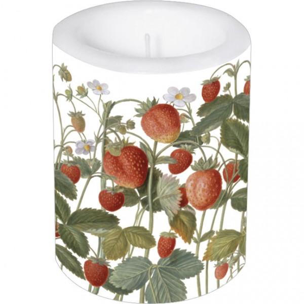 Lampionkerze groß 'Erdbeeren aus dem Nassau Florilegium'