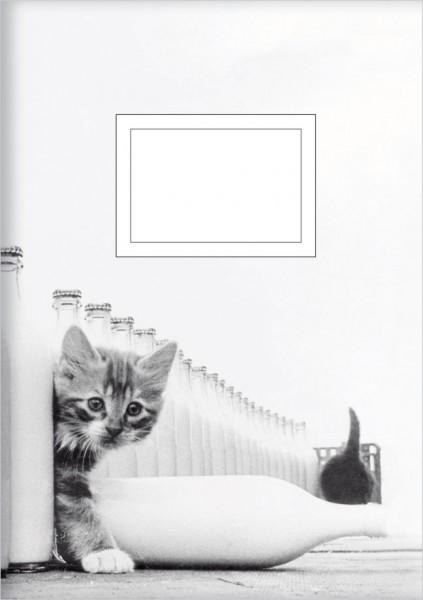 Kladden A5 'Kätzchen mit Milchflaschen'