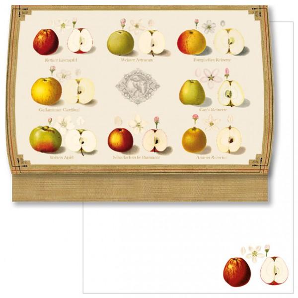 """Schreib-Set """"Pomologie der Äpfel"""""""
