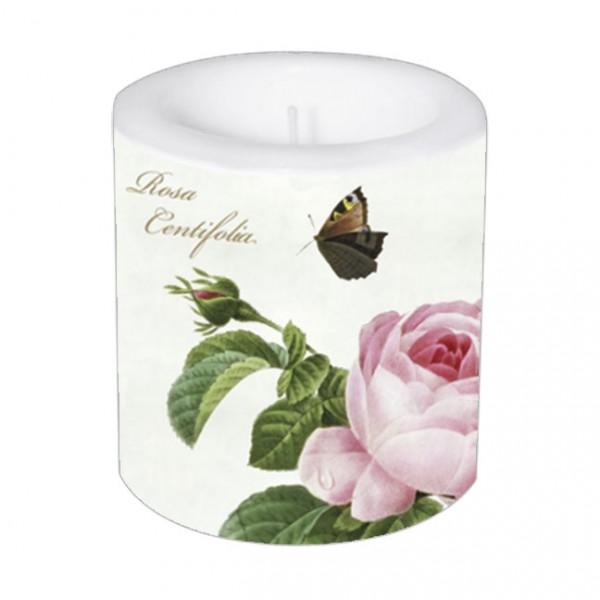 "Kleine Lampionkerze ""Rosa centifolia"""