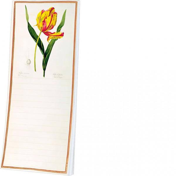 Kühlschrankblöckchen 'Tulipa Gesneriana Dracontia'
