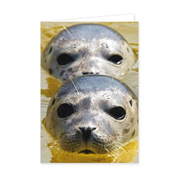 """Doppelkarte """"Zwei Seehunde"""""""